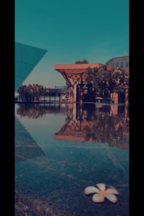 ato0m's Video 164272721640